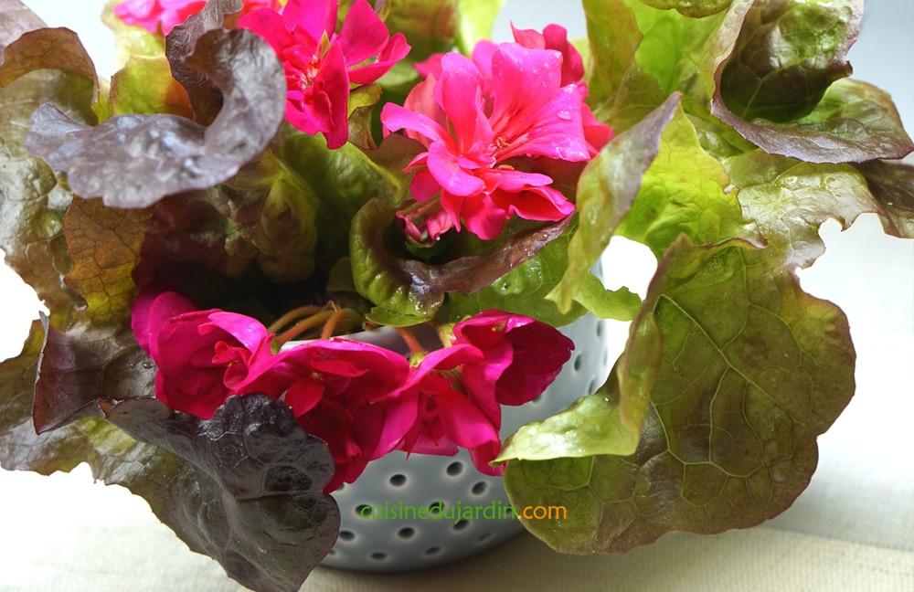 arta salade cuisine du jardin