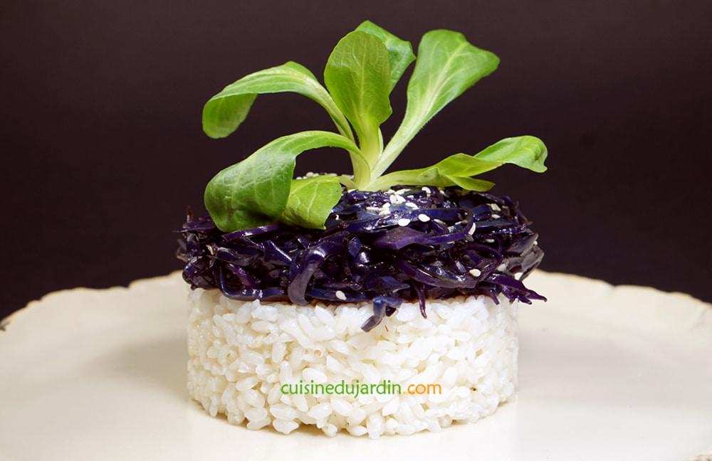 bongor fantaisie cuisine du jardin